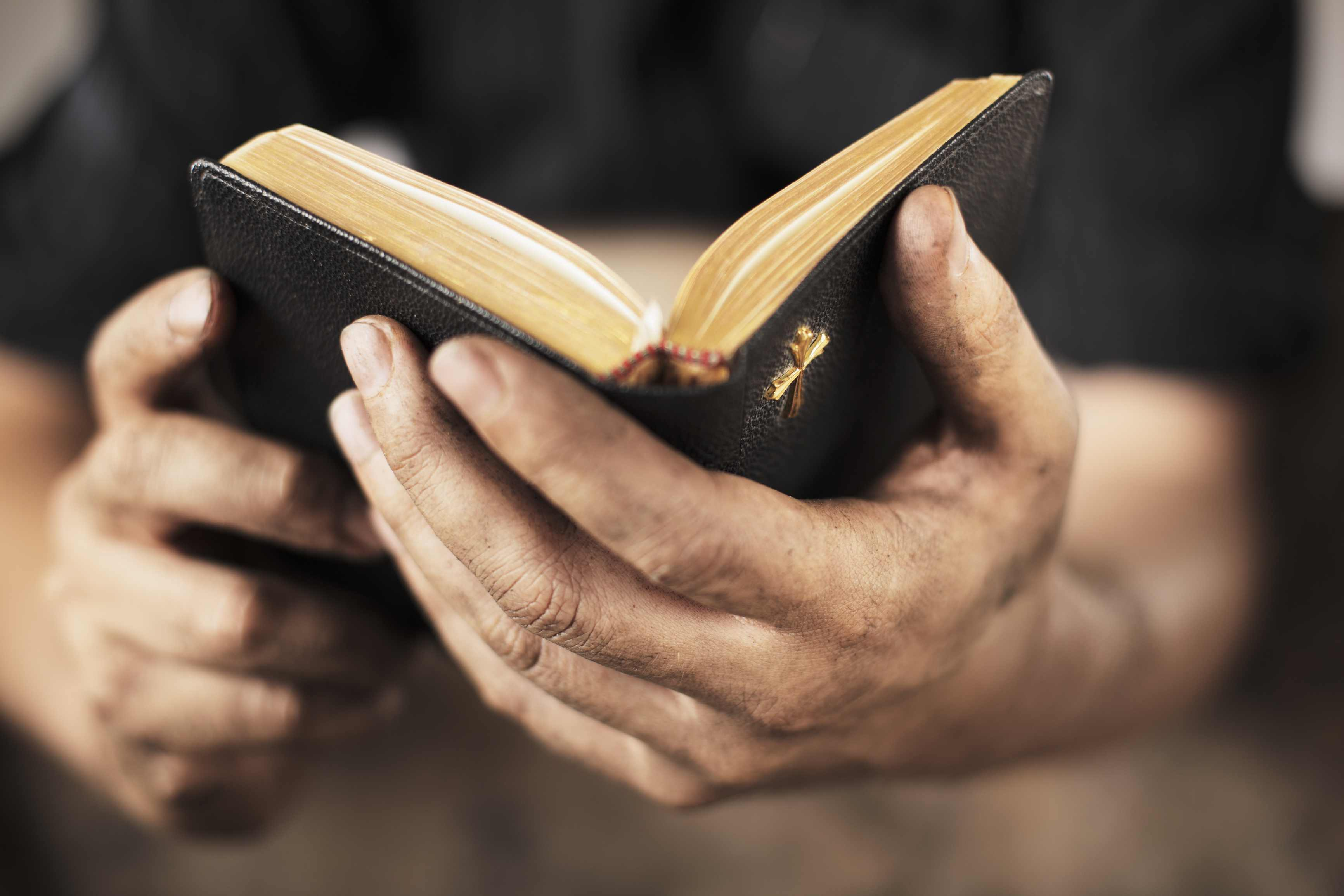 Estudios Biblicos para la Vida Cristiana